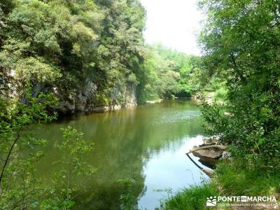 Picos de Europa-Naranjo Bulnes(Urriellu);Puente San Isidro; rio alberche las tablas de daimiel isla